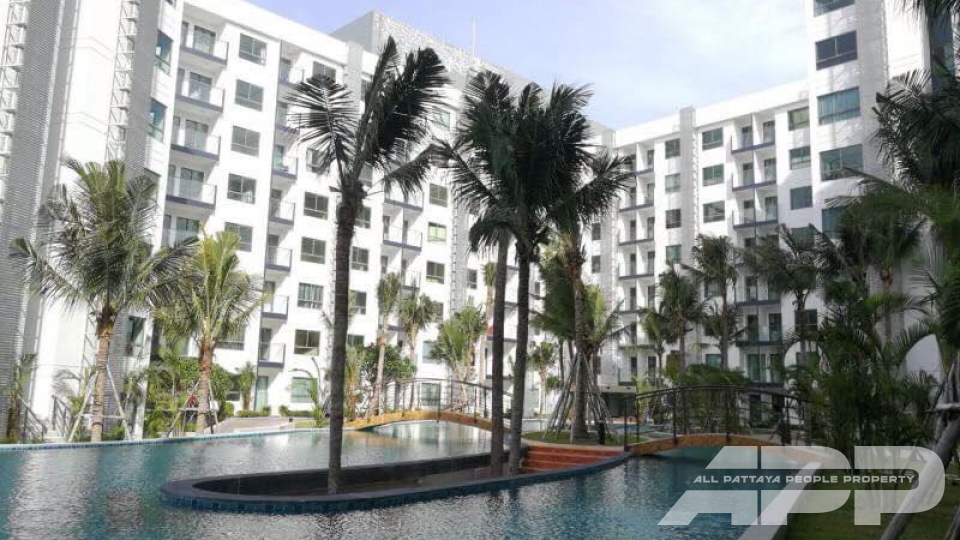 Arcadia Beach Resort 39